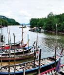 Phuket Attractive Place - Klong Mudong